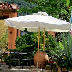 Agriturismo Villa Pacinotti, Tuscany. Rest in the peace of the countryside http://www.organicholidays.com/at/3289.htm