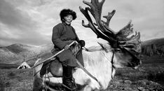 """Stunning Photos Of A Vanishing Mongolian Tribe, Known As The """"Reindeer Herders"""" Mongolia, Tribes Of The World, Maori Tribe, Indigenous Tribes, Guide Dog, Hunting, The Incredibles, Scenic Photography, Night Photography"""