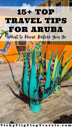 If you haven't been to Aruba you might just think of beaches and flamingos, but there's a lot more to a holiday in Aruba than that. I'm going to answer some of the most popular questions I get asked about Aruba, and what I think you need to know, to prepare you for your trip to one of the most majestic islands in the world. Here are all my travel tips for Aruba. Travel Guides, Travel Tips, Travel Destinations, Travel Articles, Beach Trip, Vacation Trips, Best Beach In Aruba, California Lighthouse, Visit Aruba