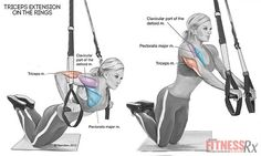 cool Triceps Extensions with Rings | FitnessRX for Women