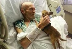 Dying Man's Condition Improves After Seeing His Beloved Dog