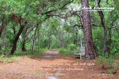 """#170511. """"To sit in the shade on a fine day, and look upon verdure is the most perfect refreshment."""" ― Jane Austen 4x6 print available in a 5x7 matte ready for framing - http://www.tampabaysnowbirder.com/thegallerypricelist.htm"""