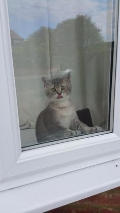 """OMG…can it be?!"" 