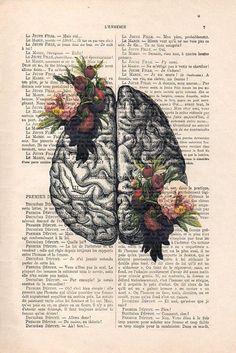Brain Art Print on 1900 vintage page botanical flowers posters drawing Human Anatomy Illustration wall art Halloween get well gift drawing Anatomy Illustration, Medical Illustration, Human Anatomy Art, Anatomy Organs, Anatomy Drawing, Gift Drawing, Drawing Tips, Brain Art, Posca Art