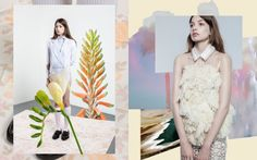 Editorial del fotógrafo Daniel Thomas Smith en Dossier Journal Issue VII, collage love!