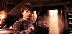 """I got Wandmaker! What Job Would You Have In The """"Harry Potter"""" Wizarding World?"""