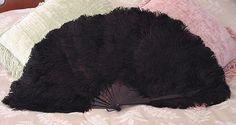 Fan of  Black Ostrich Feathers