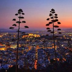 Athens night view from Lycabettus Hill. Greece ⭐️