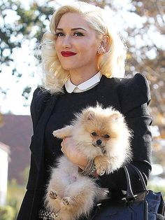 sharon+osbourne+dog | Singer, songwriter, fashion designer, dancer and occasional actress ...