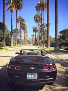 Beverly Hills, that's Where I want to be !