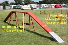 Image result for home agility equipment dogs