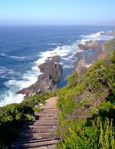 Otter Trail. Garden Route. South Africa