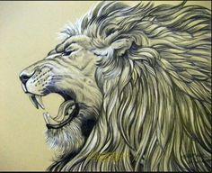 Amazing lion tattoo sketch