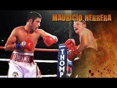 MAURICIO HERRERA TALKS JOHAN PEREZ FIGHT ON CANELO-LARA PPV