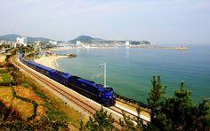 최고급침대열차 레일크루즈 '해랑' 열차시간표와 운임요금 :: 코레일톡