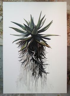 Kurt Po and his Aloe Watercolor And Ink, Watercolor Illustration, Protea Art, South African Art, Scale Art, Occult Art, Aesthetic Drawing, Whimsical Art, Flower Art