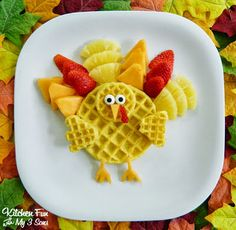 Turkey Breakfast made from fruit & waffles