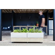 The glowpear urban garden cafe planter provides a versatile outdoor solution for public or private spaces where portability is non-negotiable.  Combining Glowpear's self watering technology with high performance, sustainable Accoya timbers, the Glowpear Urban Garden Cafe Planter is the next level in functional urban planting.   Lockable castors allow the Cafe Planter to be effortlessly wheeled inside at night, moved to optimise a sunny aspect, or configured to divide outdoor spaces.  Why do…