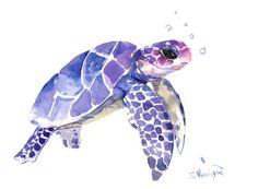 Sea Turtle painting, original watercolor painting, 12 X 9 in, blue purple sea world art