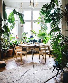 indoor jungle;Small Spaces Gardening;idées pour aménager son balcon;Bancos;plant shelf;Green home; plant decor; indoor garden herb.
