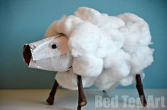 TP roll sheep