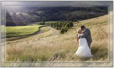 """5 star wedding venue in the beautiful Yarra Valley. """"Sutherland Estate has one of the most spectacular vineyard sites in Australia. Wedding Venues Melbourne, Victoria Wedding, Yarra Valley, Star Wedding, One Shoulder Wedding Dress, Wedding Dresses, Beautiful, Bride Dresses, Bridal Gowns"""