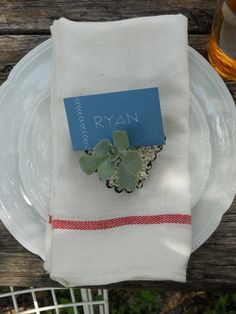 I love the idea of using small succulents to hold place cards at each setting. Succulents are tough enough to withstand almost any (dry) weather and are inexpensive to use, as one large plant can be broken into many smaller plantings. Potted in similar small containers, their uniformity is charming and adds a personal feel to events of any size. They also double as a party favor.