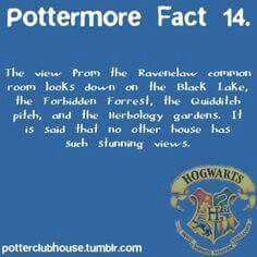 Another reason why ravenclaw is by far the best