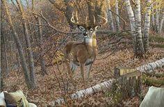 Great Eight-Whitetail Deer Art Print by Michael Sieve : Wild Wings Hirsch Wallpaper, Deer Wallpaper, Wildlife Paintings, Wildlife Art, Deer Paintings, Painting Prints, Wall Art Prints, Hunting Art, Deer Hunting