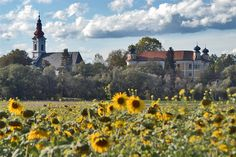 Gleinstätten Austria castle and church Kirchen, Austria, Monument Valley, Dolores Park, Castle, Europe, Places, Nature, Travel