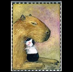 GUINEA PIG & CAPYBARA aceo Limited Edition matted print by Suzanne Le Good