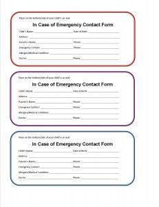 Printable Emergency Contact Form  If You Were In An Accident And  Unresponsive, This Free Printable Car Seat Emergency Form Would Allow  Emergency Responders ...