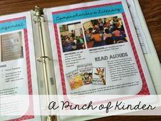 A Pinch of Kinder: Getting a Teaching Job: My Teaching Portfolio