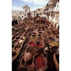 John & Lisa Merrill / DanitaDelimont Stretched Canvas Art - Tannery Vats in the Medina, Fes, Morocco - Medium 12 x 17 inch Wall Art Decor Size. Moroccan Decor, Fes, Morocco, Wall Art Decor, Canvas Art, Walmart, Stretched Canvas, Medium, Products