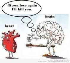 The heart has no brain.and the brain has no heart. Picture Quotes, Love Quotes, Funny Quotes, Emo Quotes, Quotes Images, Heart Quotes, Funny Love, The Funny, Funny Guys