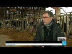 Agriculture : faire face à l'élevage intensif
