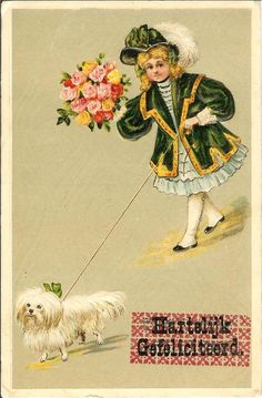 Girl w flowers n bichon MALTESE dog old EMBOSSED postcard