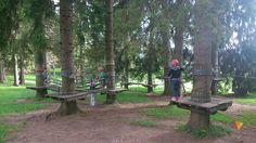 Agility Forest Millepini (Asiago, Italy): Top Tips Before You Go - TripAdvisor