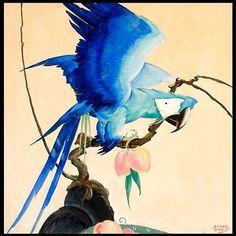 Blue parrot by Stark Davis