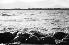 Come può uno scoglio arginare il mare?!...
