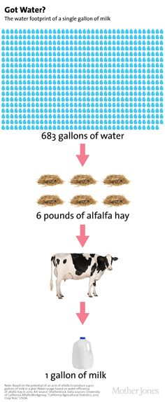 Dairy products require a whole lot of water—and many of them come from drought-ridden California.