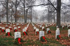 Every year thousands of wreaths are donated and laid in a different section in a wreath laying ceremony at Arlington National Cemetery.