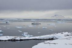 BoothPortCharcot10 Антарктида: Остров Booth, бухта Port Charcot
