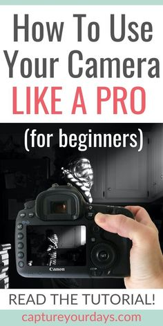If you're a photography beginner, read this photography lesson right now. Did you just get your DSLR and want to know what to do next? Want to understand your DSLR settings? These digital photography tips will get to started on the path to amazing photog Dslr Photography Tips, Photography Cheat Sheets, Landscape Photography Tips, Photography Tips For Beginners, Photography Lessons, Photography Tutorials, Photography Business, Digital Photography, Amazing Photography