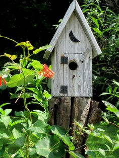 In A Summer Garden ~ Our Fairfield Home and Garden http://ourfairfieldhomeandgarden.com/in-a-summer-garden-our-fairfield-home-garden/