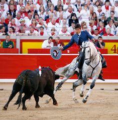 "Andalusian,""Rejoneo"" horse."