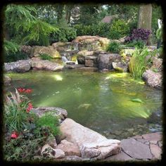 underwater led lighting, lighting, outdoor living, ponds water features, LED Lights in the pond help bring it alive at night Backyard Pool Landscaping, Landscaping With Rocks, Landscaping Ideas, Backyard Ponds, Backyard Ideas, Garden Ideas, Backyard Waterfalls, Outdoor Ponds, Diy Water Feature