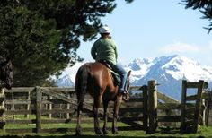Ride over our Westrayfarm on a Horse Trek or Guided Quad Bike Ride and be greeted by our other friendly horses and farm animals. Horse trekking and quad bike rides on the trails of Te Anau, New Zealand. Come and ride with us at Westray Farm Horse Treks. We are located in the beautiful lakeside township of Te Anau nestled within the world renowned Fiordland World Heritage Park.