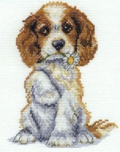 Cross-stitch Sweet Puppy, part 1