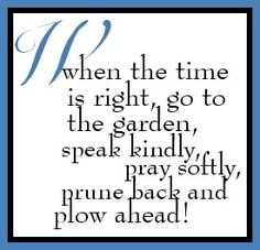 I prune my friendship garden often!  Negativity is toxic - why allow yourself to be surrounded by any of it?